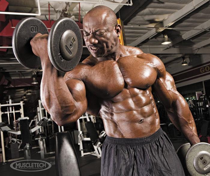 antrenament biceps masa musculara